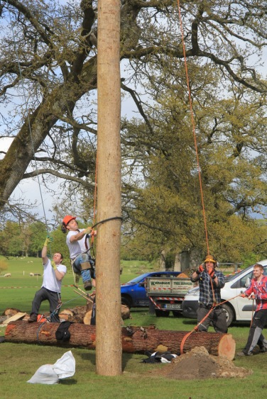 This was great too, lively lumberjacks from Monaghan exhibiting their impossible tree climbing/felling skills