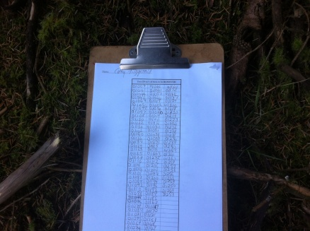 My log sheet for the first thinning - we weren't given any instruction other than mark for thinning the best we could.