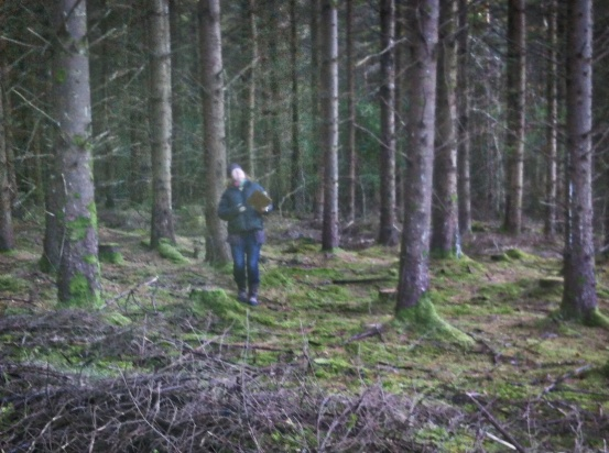 me thinning at the Tikincor marteloscope forestry training site