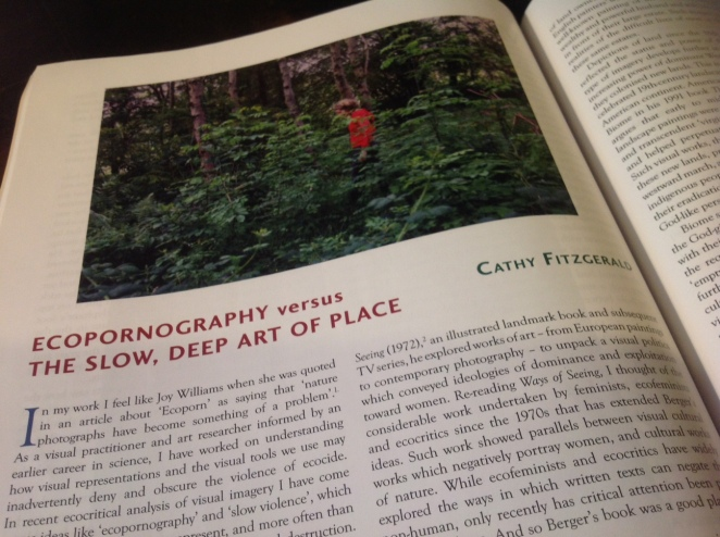 image of article by cathy fitzgerald