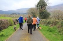 Starting up Raheen Lane towards Mt Leinster, South Co. Carlow
