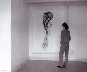 Untitled (after observing chick embryos forming) (2001)